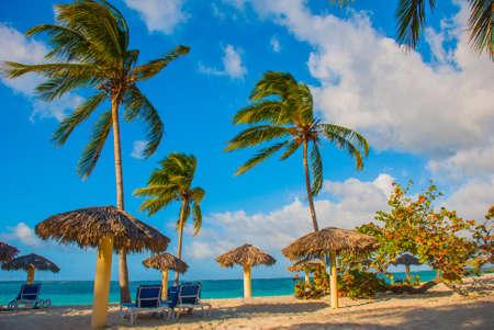 Playa Esmeralda, Holguin, Cuba. Caribbean sea. Paradise beach with palm trees in Sunny weather. Banco de Imagens - 99618472