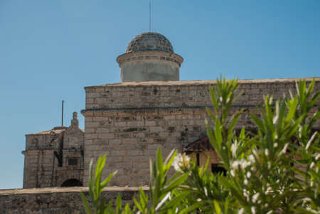 The green leaves of the Bush against the background of the fortress Fortaleza de Jagua. Castillo de Jaguar. Old Fort South of Cienfuegos in Cuba.
