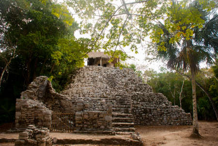 Mayan Pyramid in Coba. Ancient mayas in Mexico city. Mexico, Yucatan. 写真素材