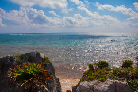 Panorama tropical landscape top view of the Caribbean sea, rocks, trees and bushes. Tulum, Mexico, Yucatan.