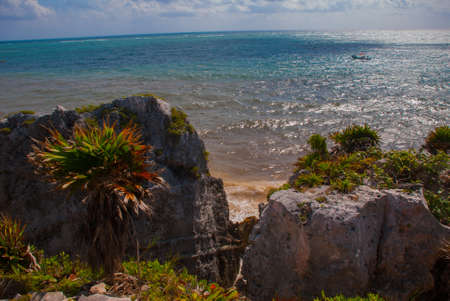 Panorama tropical landscape top view of the Caribbean sea, rocks, trees and bushes. Tulum, Mexico, Yucatan. Imagens - 101689645