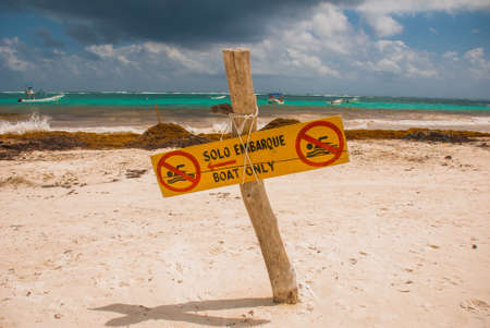 The sign plate is not for swimming,only for boats. A lot of algae, debris and mud on the beach. Terrible beach after the rains in Mexico. Tulum, Yucatan, Riviera Maya.