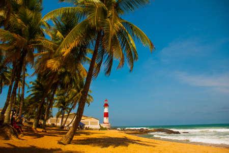 SALVADOR, BAHIA, BRAZIL: Farol De Itapua on the rough sea. Tropical landscape on the beach with palm trees and lighthouse. Lighthouse on the beach in Sunny weather. South America Banco de Imagens