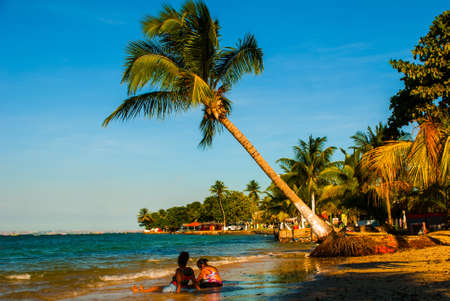 Vera Cruz, island Itaparica, Bahia, Brazil: Beautiful island with palm trees and a beach near the city of Salvador in Sunny weather.
