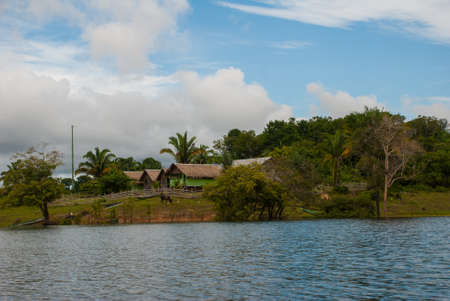 Amazon river, Manaus, Amazonas, Brazil, South America: Beautiful landscape overlooking the Amazon river with houses. Banque d'images