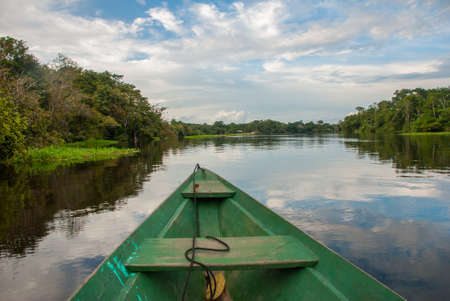 View from the boat at Amazon river, with a dense forest on the shore and blue sky, Anazonas, Brazil. South America