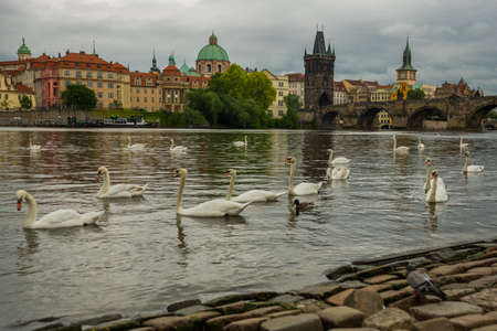 Charles bridge, Prague, Czech Republic: Karluv Most. The famous beautiful and ancient Charles bridge, a popular place for tourists.