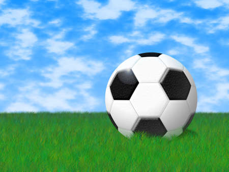 herbage: The image of a football in a field on a grass.