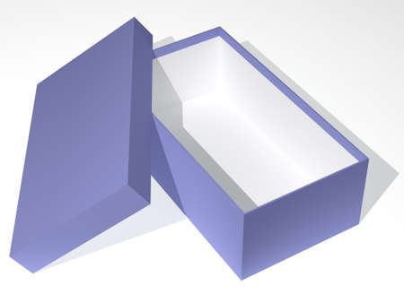 pasteboard: The three-dimensional image of a box for footwear
