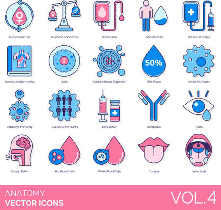 Icons of human anatomy, physiology, system, immunity, blood cells