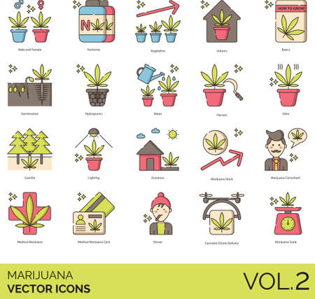 Line icons of marijuana or cannabis planting methods, harvest, consultant