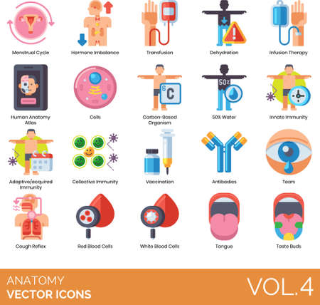 Flat icons of human anatomy system, immunity, vaccination, transfusion, taste buds