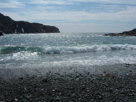 shoreline: Shoreline