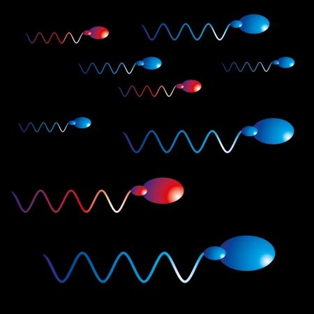 black background sperm vector art