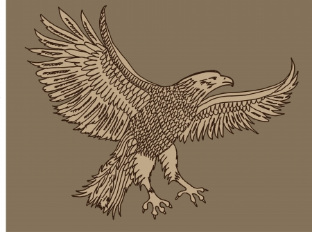 hand drawing eagle vector art Vector