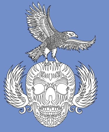 swoop: parte del cr�neo dibujo y el arte vectorial �guila
