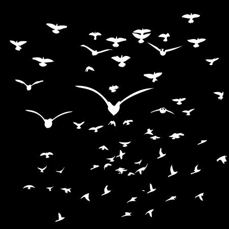 black background birds life vector art Stock Vector - 19648700