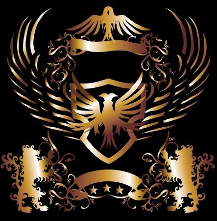 golden frame lion and eagle art Vector