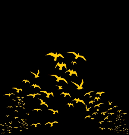 birds silhouette sets vector art Vector