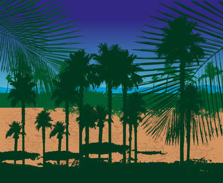 paradise palm beach vector art
