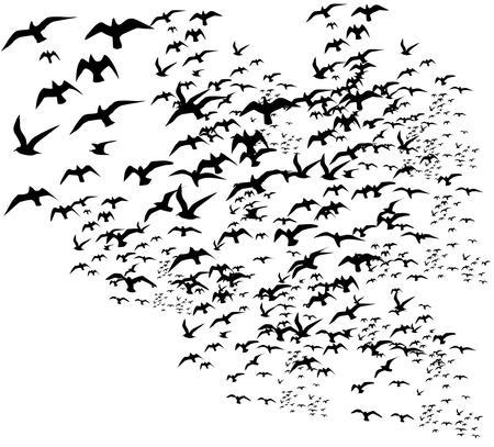 zwarte achtergrond vogels leven vector kunst Stock Illustratie