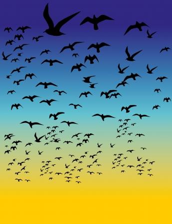 black background birds life vector art Stock Vector - 22751642