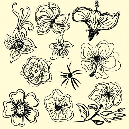 Hibiscus flower silhouettes vector art Vector