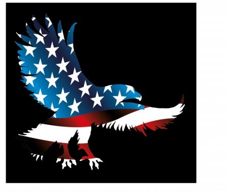 愛国心: アメリカン ・ イーグルとフラグのベクター アート
