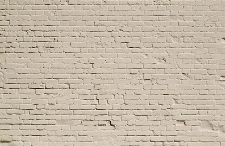 White brick wall photo