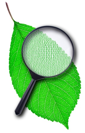 Under a magnifying glass to observe the digital code green leaf plants