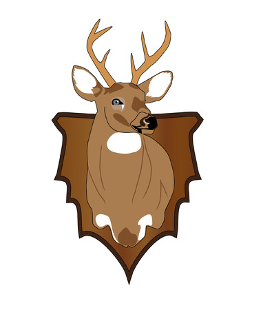 Whitetail Deer head on a arrowhead pannel.