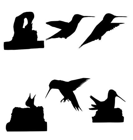 Kwaliteit Silhouette van van kolibries. Stock Illustratie