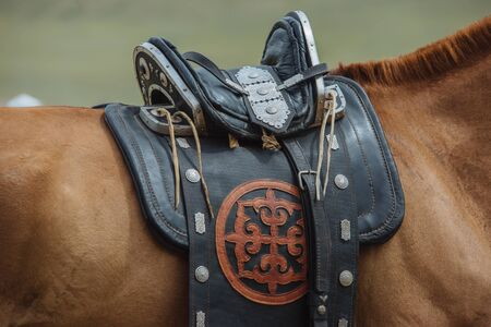 The saddle with ornament for Horse. Brown Horse Stockfoto