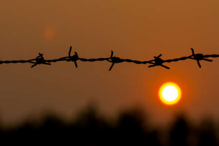 Barbed wire silhouette on sunset sky photo