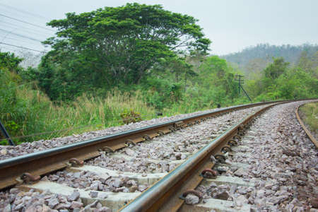 forest railroad: Railway track in a green forest  Railroad track vanishing into the distance  in Thailand