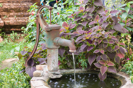 An old fashioned hand water pump above old water well, with plants