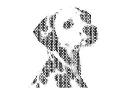 word dog mixed to be figure of dog, with typography style, isolated on white background photo