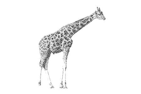 word giraffe mixed to be figure of giraffe, with typography style, isolated on white background photo