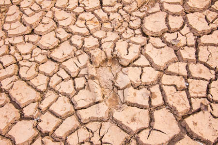 lack of water: background of cracked earth indicates dry weather, drought, or lack of water. footprint in the middle