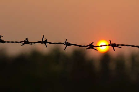 Barbed wire silhouette on sunset sky. photo