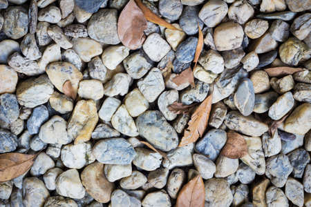 natural background image of pebbles in the park with dry leaves. photo
