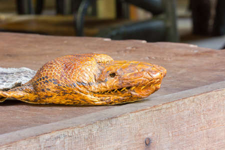Stuffing pythons head on the table. photo