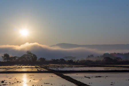 rice field over the mountain range with cloud and beautiful sunrise photo