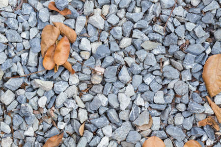 blue rock texture on the ground, with dry leaves, background photo