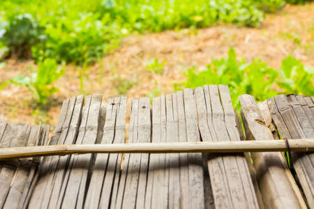 bamboo stick: Background bamboo stick floor soft focus, focusing on the end of the floor Stock Photo