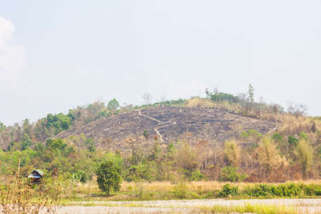 firestorm: hill without trees because of fire with trace line