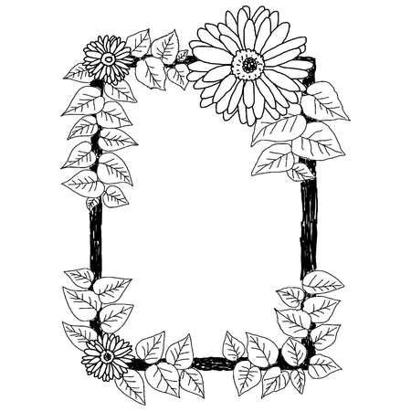 white daisy: hand drawn doodles of daisies and leaves frame on the white background, vector illustration