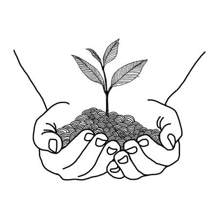 illustration vector hand drawn doodles of hands holding seedling design isolated on white background
