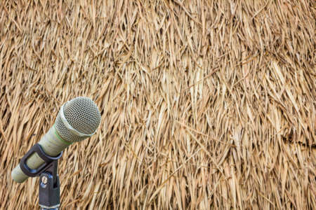 cylindrica: microphone on a stand with blurred dried leaves of the cogon grass
