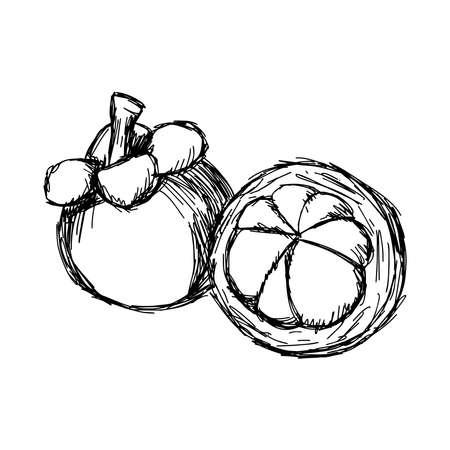 Thai dessert: illustration vector doodle hand drawn of sketch mangosteen isolated Illustration